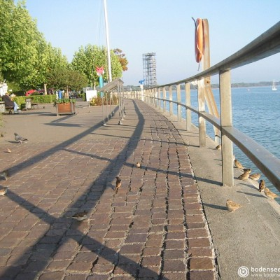 bodensee.gallery
