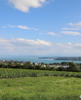 Bodensee Panoramas by bodensee.photography